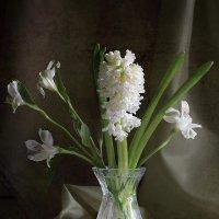 Весна :: Татьяна Панчешная