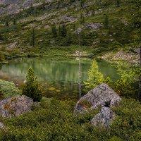 Озеро в горах :: Андрей Поляков