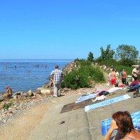 Бывший стрельнинский пляж... :: Владимир Ильич Батарин