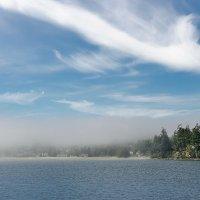 Локальный туман :: Alena Nuke
