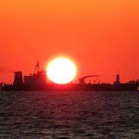 Солнце на экспорт) :: Николай Волков