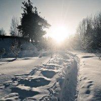 Морозно Солнечно... Прекрасно... :: ВладиМер