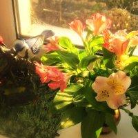 Птицы и цветы :: татьяна