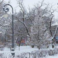 После снегопада :: Оксана Успенская