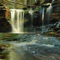 Elakala Falls :: Naum