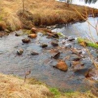 Весна на реке. :: ВАЛЕНТИНА ИВАНОВА