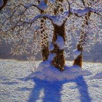 Волшебный свет Шультце ... :: Лариса Корженевская
