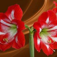 Моя весна расцвела.. :: Алла Кочергина