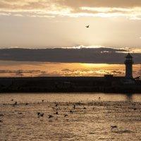 Ялтинский маяк :: Виталий Репкин