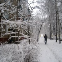 Опять зима.. :: Елена Семигина