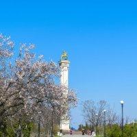 Парк Победы, Севастополь :: Zinaida Belaniuk