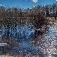 Мартовский лёд :: Андрей Дворников