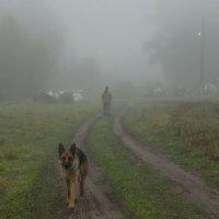 Меня ждут... :: Татьяна Степанова