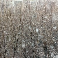 Весной! Московская  метель ! :: Виталий Селиванов