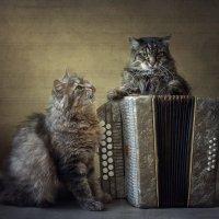 Оттого, что кто-то любит гармониста! :: Ирина Приходько