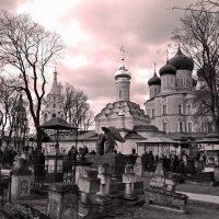 Донской монастырь :: Victor