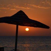 Красное солнце из Красного моря :: Максим Маевский