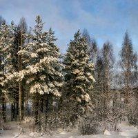 ...облачно,возможно прояснение... :: dragonflight78.klimov