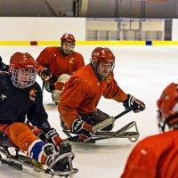 Слэдж-Хоккей тренировка. :: Вячеслав Ложкин