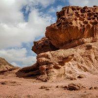 природа :: svabboy photo
