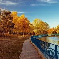 Осень в городских парках. :: Вахтанг Хантадзе