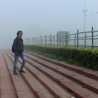 rise :: The heirs of Old Delhi Rain