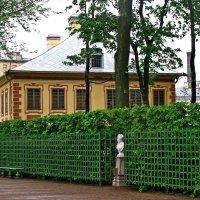 Домик Петра в Летнем саду :: Наталья