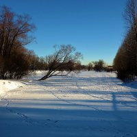 На заснеженном пруду... :: Sergey Gordoff