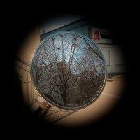 В зеркале :: Валерий Розенталь