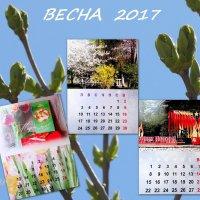 Календарь для моих друзей... :: Тамара (st.tamara)
