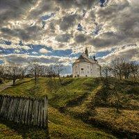Ильинская церковь (Суботов) :: Александр Бойко