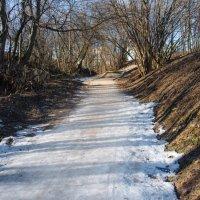 Короткая дорога к весне. :: Владимир Безбородов