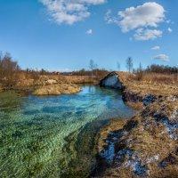Весенний день на реке Ижора. :: Фёдор. Лашков