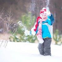 Зимние забавы :: Инна Голубицкая