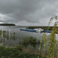 перед дождём :: Владимир Иванов