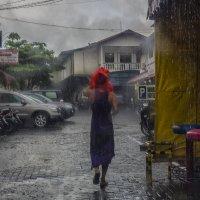дождь и красный пакет :: Александр
