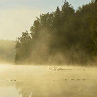 Безмятежность раннего утра.... :: Юрий Цыплятников