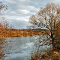 Река Осётр :: Дмитрий Сорокин
