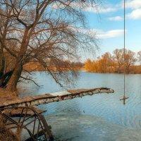 Тарзанка на реке Осётр, вблизи села Чулки-Соколово :: Дмитрий Сорокин