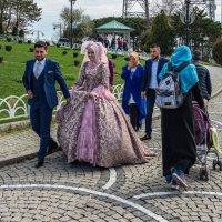 Про турецкую свадьбу... :: Виктор Льготин