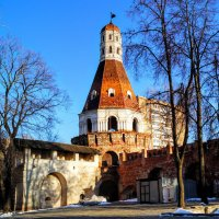 Симонов монастырь. Основан в 1379 году. (заброшен) :: Larisa Ereshchenko