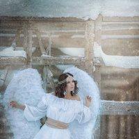 Ангел :: Анастасия Бембак
