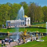 Где-то в солнечном Петергофе... :: Sergey Gordoff