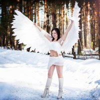 Ангел :: Екатерина Волк