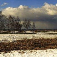 Белеет снег в полях ещё. Весна идёт. :: Сергей Жуков