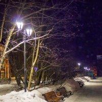 Вечерний парк :: Роман Маркин