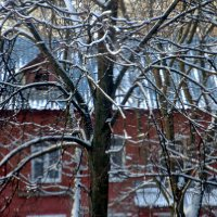 идёт снег :: Валерий Самородов