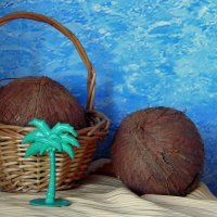 Про кокосы. :: nadyasilyuk Вознюк