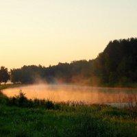 Утро на озере. :: nadyasilyuk Вознюк