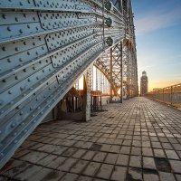 Большеохтинский мост. :: Frol Polevoy